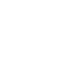 Logo the show riccione
